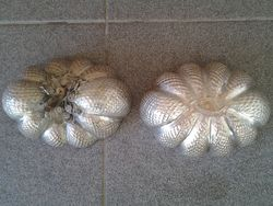 antique_pumpkin_in_pure_liver_Laos.jpg