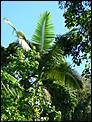 Cairns meet during Easter 2008-liz-jen-oz-honeymoon-103.jpg
