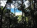 Anyone done the Burleigh/Tallebudgera National park walk?-112_1257.jpg