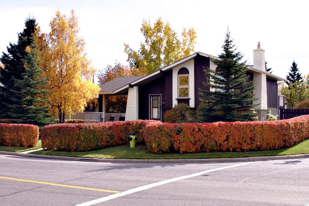 28 best front to back split house split level home for Front to back split house