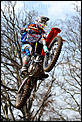 Shipping bikes-searle-500.jpg