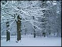 and now its snow time-sues-garden.jpg