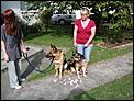 Dogs get married-dscf0127.jpg