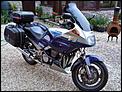 Bikers Delight-fj-pic-1.jpg