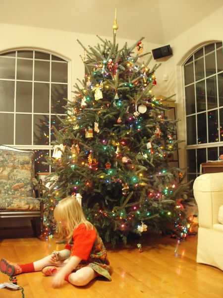What's your Christmas tree look like? - British Expats