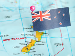 Image result for nz immigration
